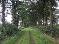 49849 Wilsum, Germany - panoramio - Roland Meijerink (21).jpg