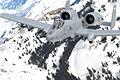 A-10A Idaho ANG over Sawtooth Range 2009.jpg