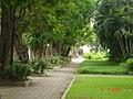 AIT, 12120, Thailand - panoramio.jpg
