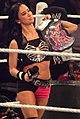AJ Lee WWE Divas Champ.jpg