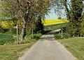 A Footpath across a country road - geograph.org.uk - 407304.jpg
