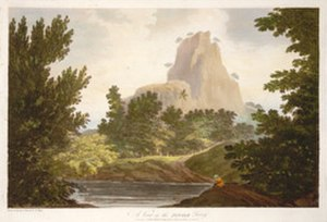 Jungle Terry - A View in the Jungle Terry by William Hodges, 1782.