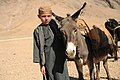A boy stands in line to get his animal veterinary care from medics with coalition special operations forces in the Gizab district of Uruzgan province, Afghanistan, Nov. 30, 2011 111130-N-UD522-292.jpg