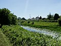 A walk by the Lagan Canal - geograph.org.uk - 1369158.jpg