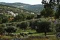 Aalook village - panoramio.jpg