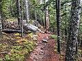 Acadia National Park, Maine (e807f1f4-df65-41b7-a5d8-b7b411d136ec).jpg