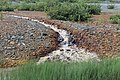 Acid mine drainage at Tilt Cove.jpg
