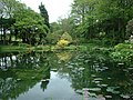 Across the Lake at Marwood Hill Gardens - geograph.org.uk - 723734.jpg