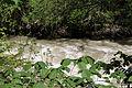 Admont-Weng - Naturdenkmal 958 - Kataraktstrecke der Enns - VI.jpg