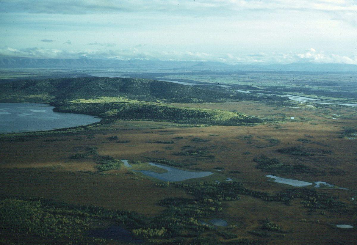 Px Aerial Shot Of Fall Colors Near Big Delta C Interior Alaska