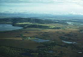 Aerial shot of fall colors near Big Delta, interior Alaska.jpg