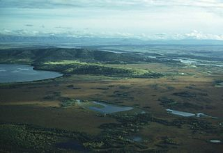 Big Delta, Alaska CDP in Alaska, United States