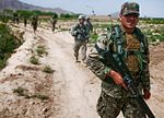 Afghan forces work with 2SCR to protect their country DVIDS391971.jpg