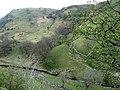 Afon Cledwen yn y cwm. Cledwen river in the valley. - geograph.org.uk - 407255.jpg