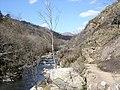 Afon Glaslyn - geograph.org.uk - 1175957.jpg