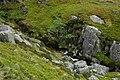 Afon Goch - geograph.org.uk - 832387.jpg
