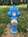Aire de Villeroy (A19) - blue fire hydrant.JPG