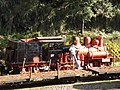 Alishan railway 2014 12.JPG