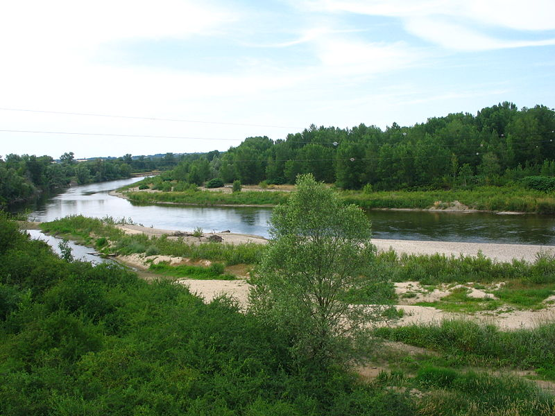 Rive gauche de l'Allier à Contigny (03).