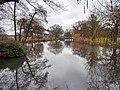 Alstervorland im Alsterpark Teich (1).jpg