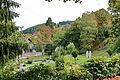 Altenau (Harz) IMG 4529.jpg