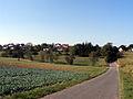 Altrich Umland (1).jpg