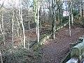 Alum Scar wood - panoramio (9).jpg