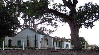 Rancho Santa Rita - Restored Alviso Adobe in Alviso Adobe Community Park, with a large old Valley oak (Quercus lobata) tree.