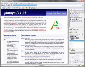 Online rich-text editor - Content being edited in the Amaya online rich-text editor
