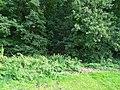Amselweg, Pirna 125102540.jpg
