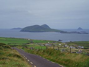 An Blascaod Mor (Great Blasket Island) - geograph.org.uk - 220151.jpg