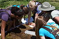 Andrea Leslie holds a hellgrammite (8696544382).jpg