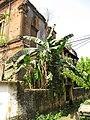 Andul Royal Palace - Howrah 2012-03-25 2839.JPG