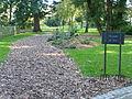 Angers, Arboretum - 5.JPG
