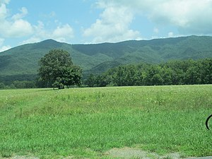 is cades cove open