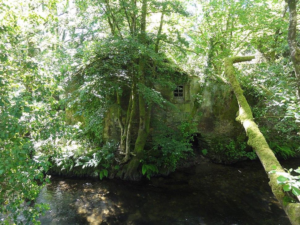 Antiguo molino al lado del Río Lérez (Pontevedra, Galicia, España) 01