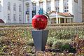 Apfel Ostrowo Nordhausen.jpg