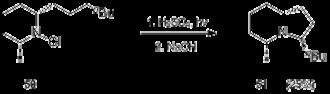 Hofmann–Löffler reaction - Image: Applications in synthesis Scheme 17