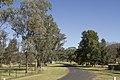 Apsley NSW 2820, Australia - panoramio (26).jpg