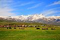 Aragats mountain, Aragatsotn, Armenia.jpg