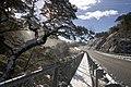 Arthurs Pass - panoramio - Maksym Kozlenko (44).jpg