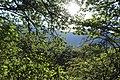 Arzakan-Meghradzor Sanctuary 025.jpg
