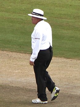 At the Cricket 2 (geograph 4111275) (Marais Erasmus cropped).jpg