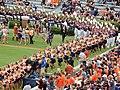 Auburn, AL, USA - panoramio - Tom Key (26).jpg