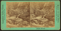 Austin Stream, from Robert N. Dennis collection of stereoscopic views 2.png