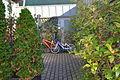 Autumn in Gijon.JPG