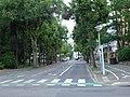Avenue Joffre (Colmar) (1).JPG