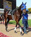 Axion-horse.jpg