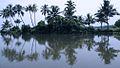 Backwaters Around Kochi (2631956935).jpg
