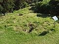 Badger sett, Kew Gardens - geograph.org.uk - 226829.jpg